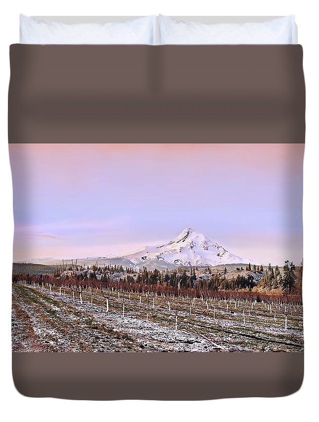 Orchard Duvet Cover featuring the photograph Parkdale Dawn by John Christopher