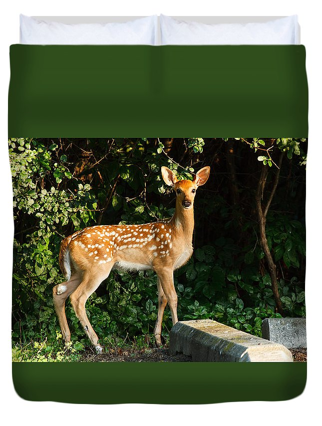 James Marvin Phelps Photography Duvet Cover featuring the photograph Parking Lot Pose by James Marvin Phelps