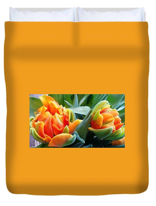 Parrot Duvet Cover featuring the photograph Parrot Tulip by Agnieszka Adamska