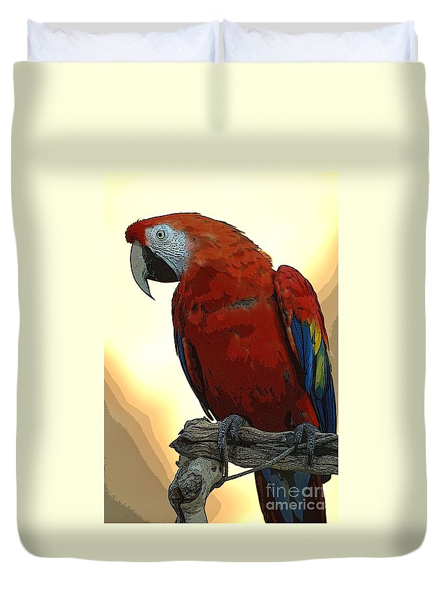 Animals Duvet Cover featuring the photograph Parrot Watching by Norman Andrus