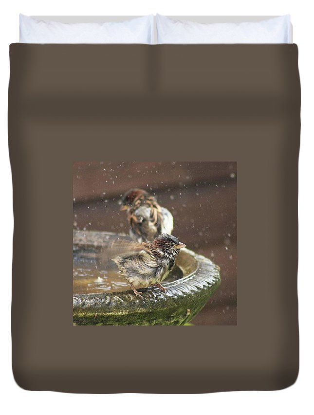 Nature Duvet Cover featuring the photograph Pass The Towel Please: A House Sparrow by John Edwards