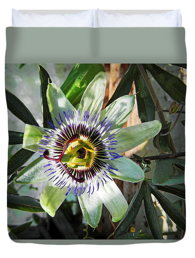 Britain Duvet Cover featuring the photograph Passion Flower Close-up by Rod Johnson