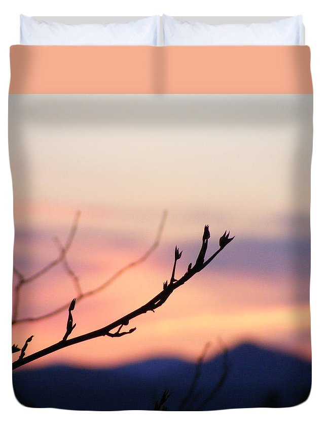 Mountains Duvet Cover featuring the photograph Pastel Twig by Zen WildKitty