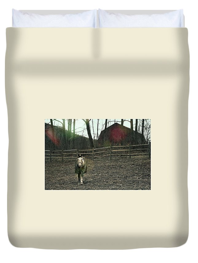 Horse Duvet Cover featuring the photograph Pasture Pony by JAMART Photography