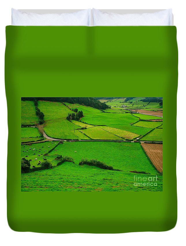 Dairy Duvet Cover featuring the photograph Pastures In The Azores by Gaspar Avila