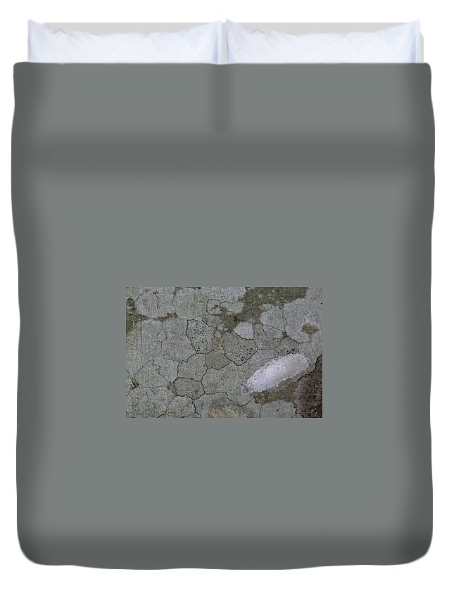 Grey Duvet Cover featuring the photograph Patches Of Grey And Life by Douglas Barnett
