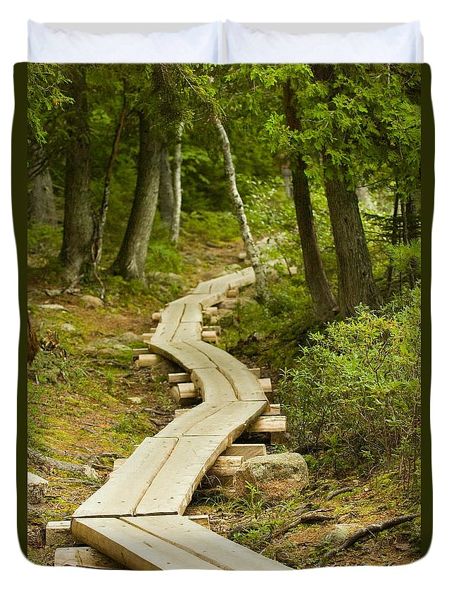 Forest Duvet Cover featuring the photograph Path Into Unknown by Sebastian Musial