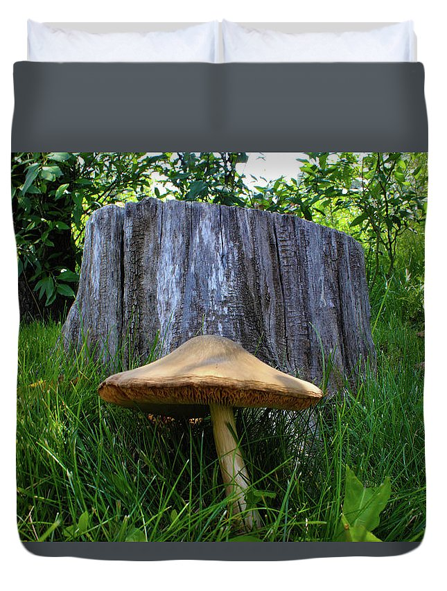 Mushroom Duvet Cover featuring the photograph Path of Mushrooms by Shane Bechler