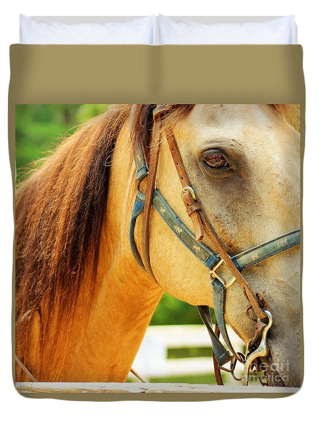 Horse Duvet Cover featuring the photograph Patient Horse by Meagan Davis