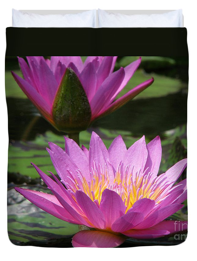 Lillypad Duvet Cover featuring the photograph Peaceful by Amanda Barcon