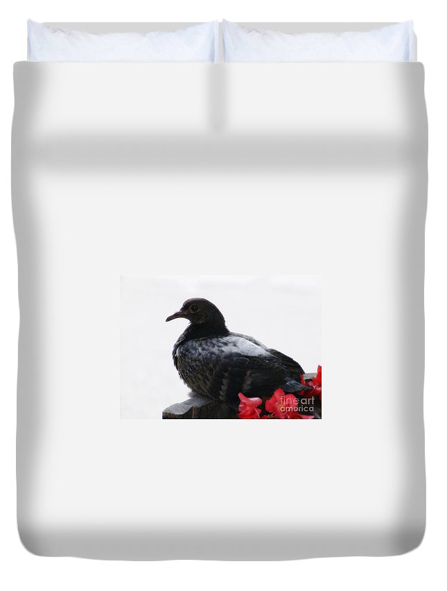Bird Duvet Cover featuring the photograph Peaceful Garden - 2 by Linda Shafer