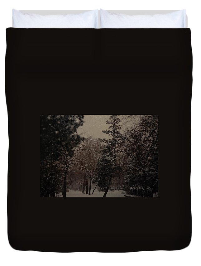 Lights Duvet Cover featuring the photograph Peaceful Snow Dusk by Rob Hans