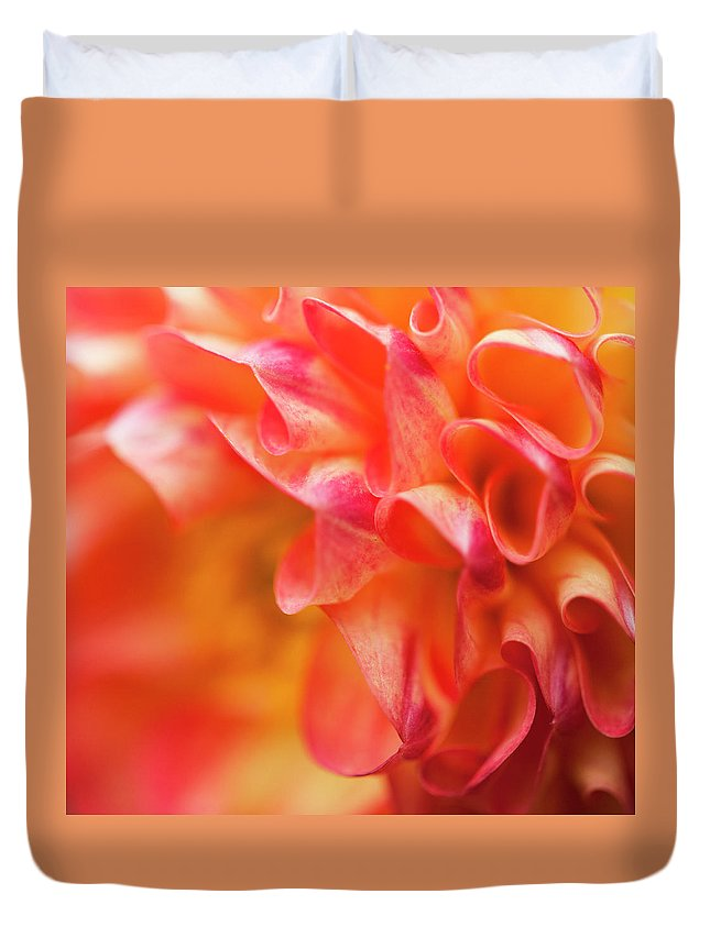 Dahlia Duvet Cover featuring the photograph Peach Color Dahlia by Alida Thorpe