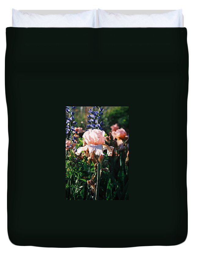 Flower Duvet Cover featuring the photograph Peach Iris by Steve Karol