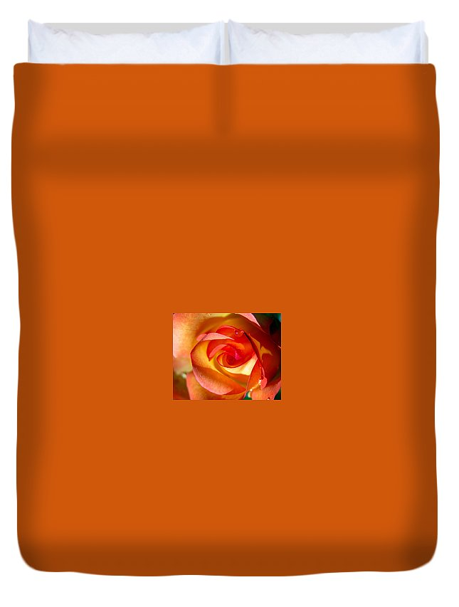 Rose Duvet Cover featuring the photograph Peach Rose by Amy Fose