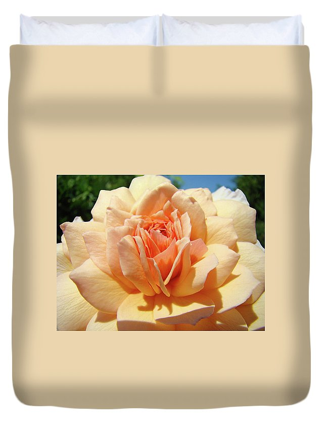 Rose Duvet Cover featuring the photograph Peach Rose Art Prints Roses Flowers Giclee Prints Baslee Troutman by Baslee Troutman