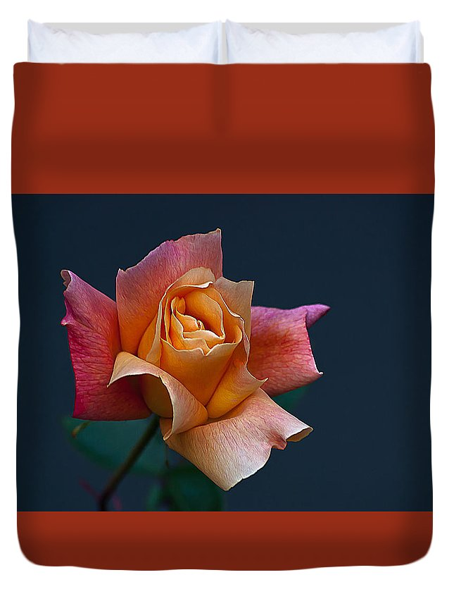 Floral Duvet Cover featuring the photograph Peach Rose Bud by Emerald Studio Photography