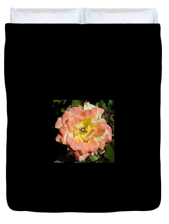 Peach Duvet Cover featuring the photograph Peach Rose by Shirley Heyn