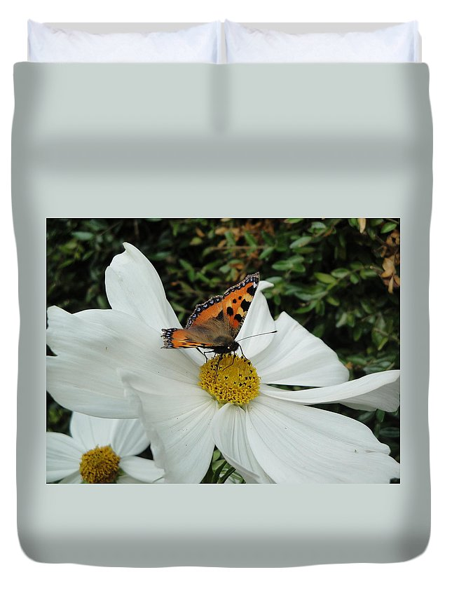 Butterfly Duvet Cover featuring the photograph Peacock Butterfly On Cosmos by Susan Baker