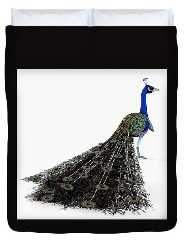 Bird Duvet Cover featuring the painting Peacock Profile by Corey Ford