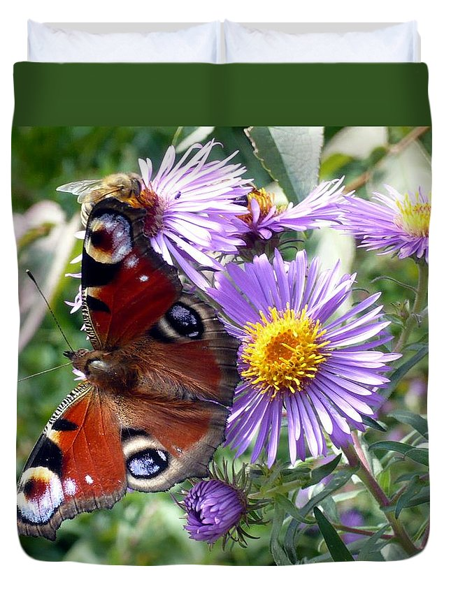 Peacock Duvet Cover featuring the photograph Peacock With Bee by Helmut Rottler