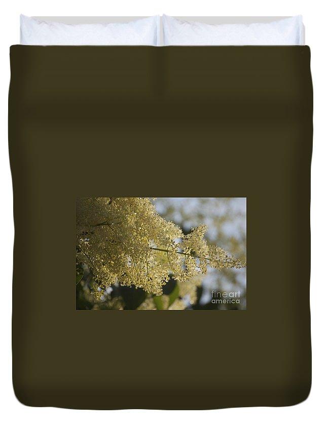 Pear Duvet Cover featuring the photograph Pear Blossom by Faith Harron Boudreau