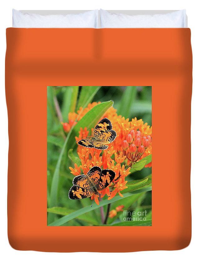 Pearly Crescentspot Butterfly Duvet Cover featuring the photograph Pearly Crescentspot by Gail Huddle