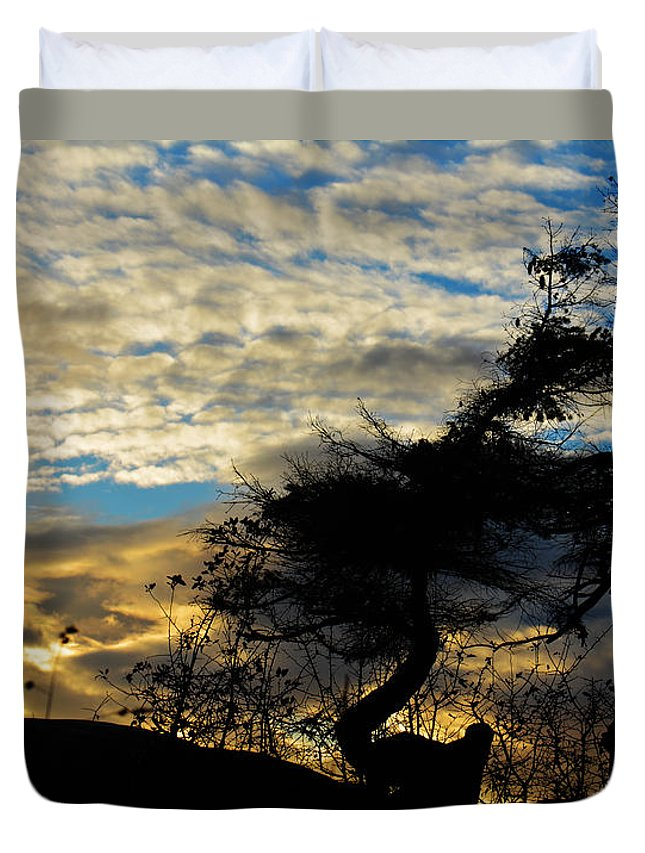 Tree Duvet Cover featuring the photograph Pebbles Beach Pine Tree by Elaine Hunter