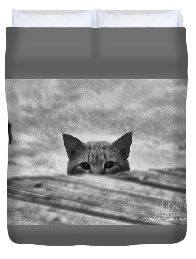 Cat Duvet Cover featuring the photograph Peek A Boo by Carole Martinez