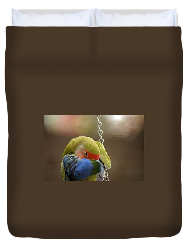 Clay Duvet Cover featuring the photograph Peek A Boo by Clayton Bruster