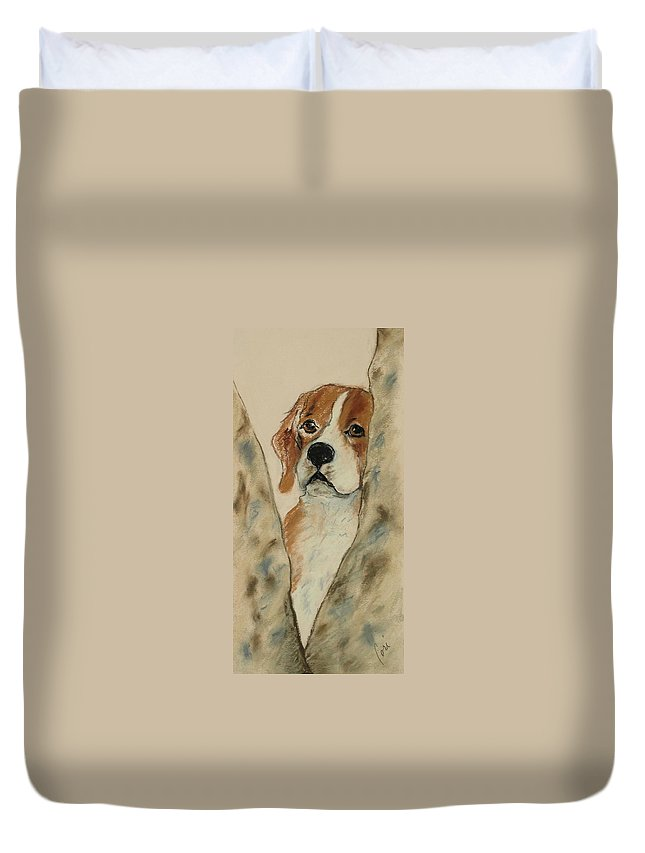 Beagle Duvet Cover featuring the drawing Peek A Boo by Cori Solomon