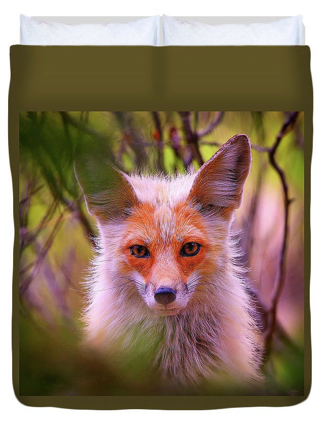 Fox Duvet Cover featuring the photograph Peek-a-boo by Greg Norrell