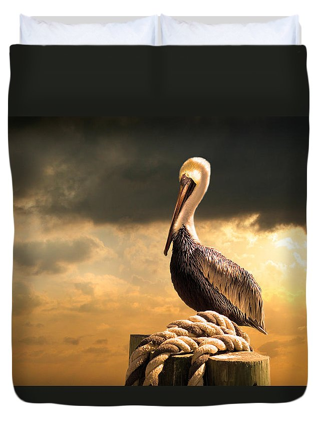 Pelican Duvet Cover featuring the photograph Pelican After A Storm by Mal Bray