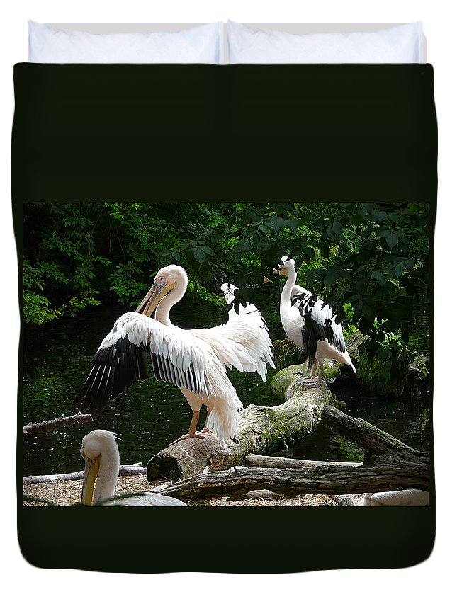 Bird Duvet Cover featuring the photograph Pelican Hideaway by Valerie Ornstein