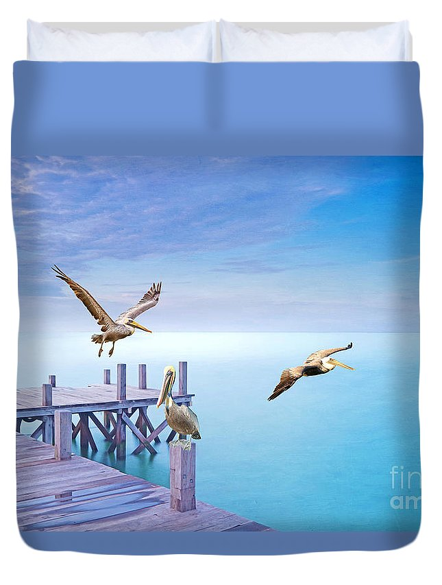 Brown Pelicans Duvet Cover featuring the photograph Pelican Party by Laura D Young