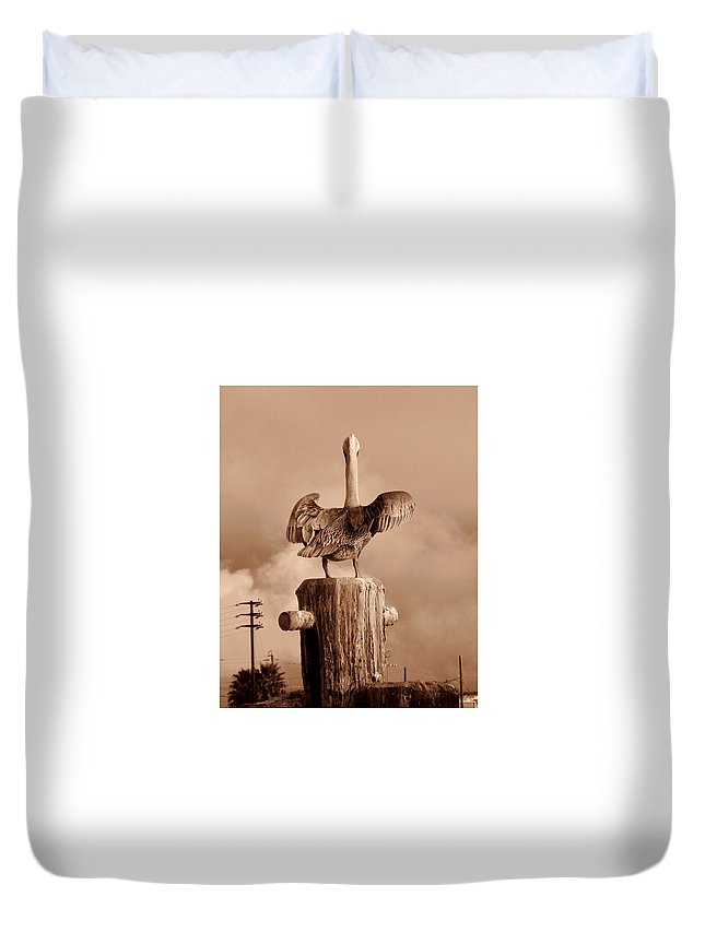 Animal Duvet Cover featuring the photograph Pelican Perch by Karl Huggins