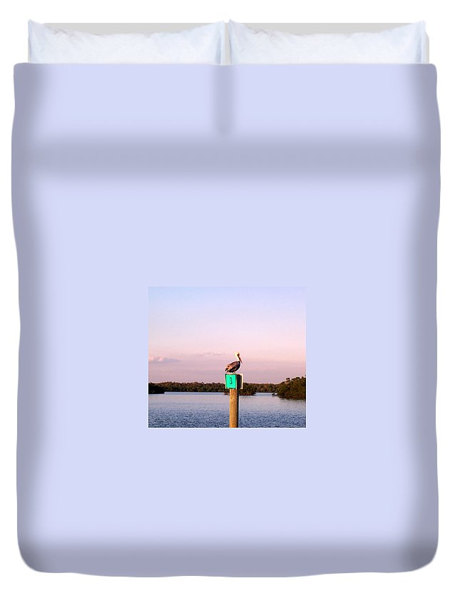 Pelican Duvet Cover featuring the photograph Pelican Roost by Elizabeth Klecker