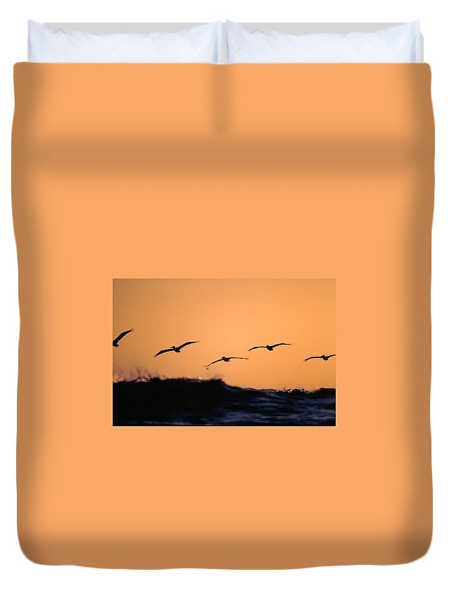 Pelicans Duvet Cover featuring the photograph Pelicans Over The Pacific by Michael Mogensen