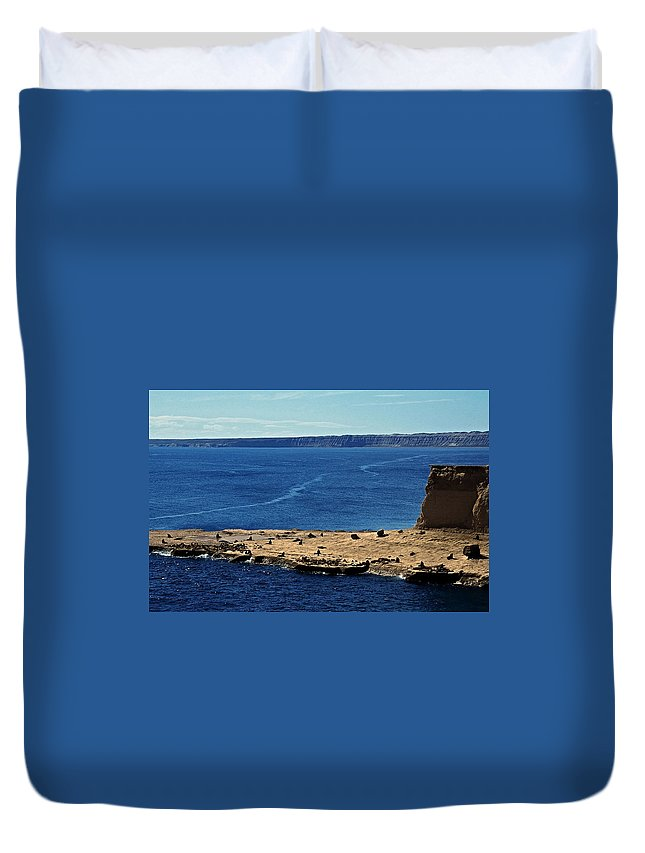 South America Duvet Cover featuring the photograph Peninsula De Valdez by Juergen Weiss