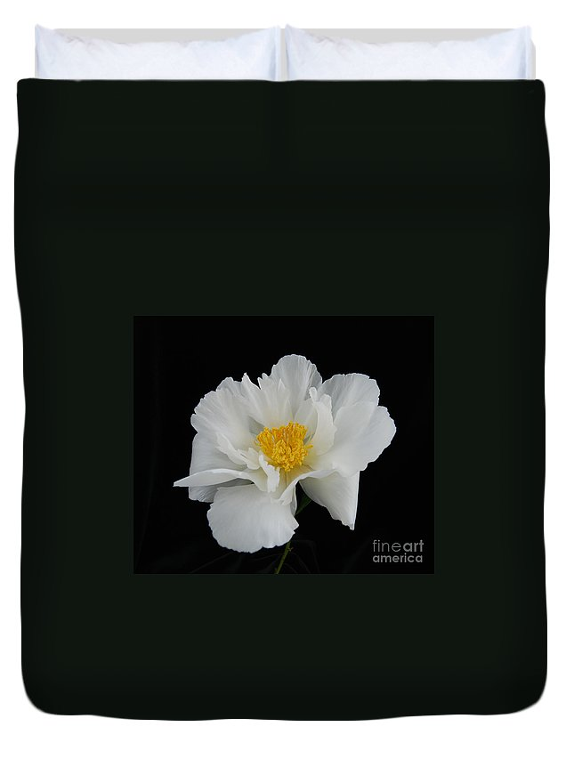Peonies Duvet Cover featuring the photograph peony 10 Single White Peony II by Terri Winkler