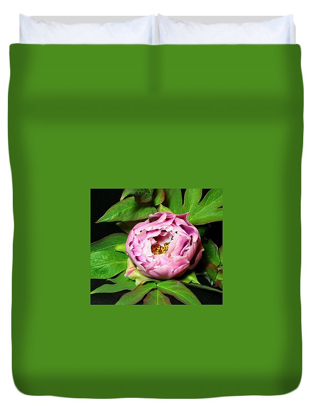 Flower Duvet Cover featuring the pyrography Peony 2 by Robert Morin
