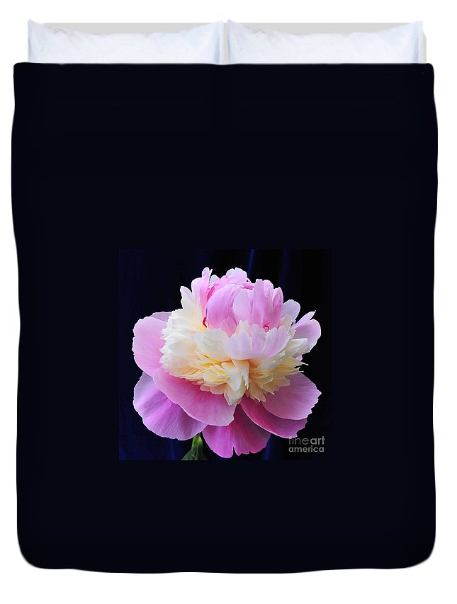 Peonies Duvet Cover featuring the photograph peony 5 Double Light Pink Peony III by Terri Winkler