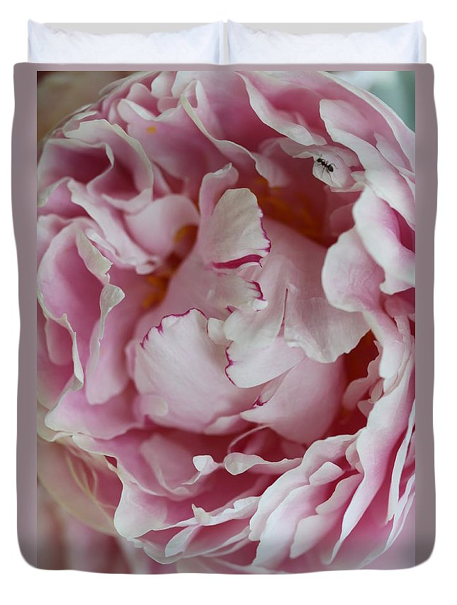 Peony Duvet Cover featuring the photograph Peony Close Up by Christiane Schulze Art And Photography