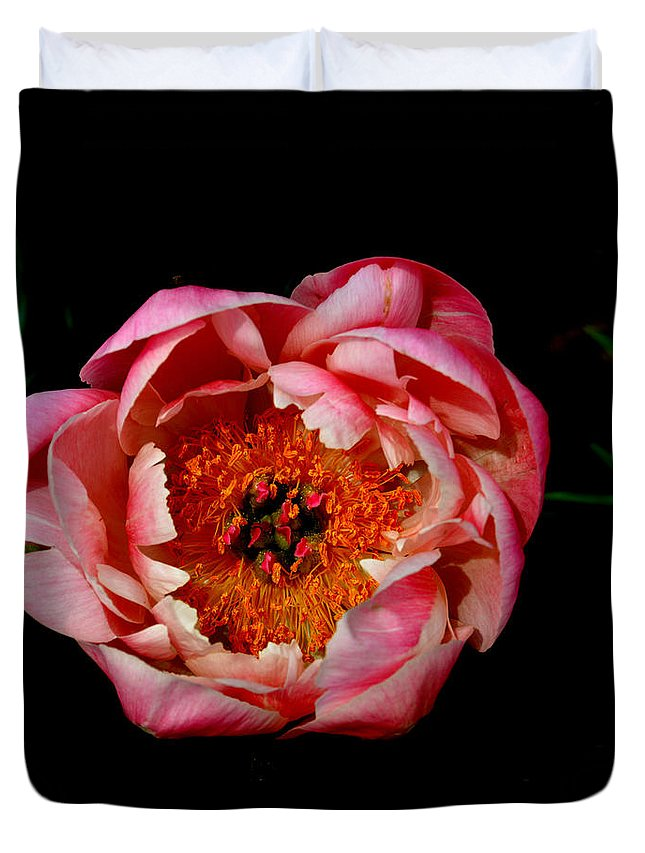 Flower Duvet Cover featuring the photograph Peony On Display by Belinda Stucki
