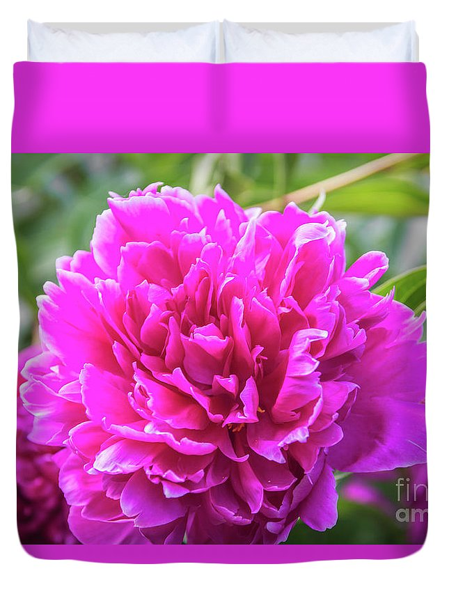 Flowers Duvet Cover featuring the photograph Peony by Pamela Williams
