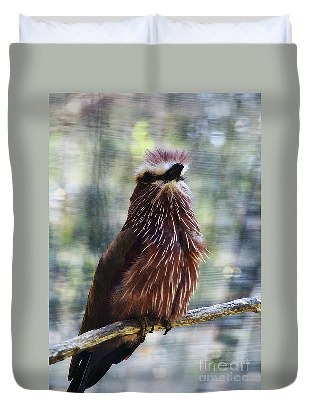Bird Duvet Cover featuring the photograph Perched - 2 by Linda Shafer