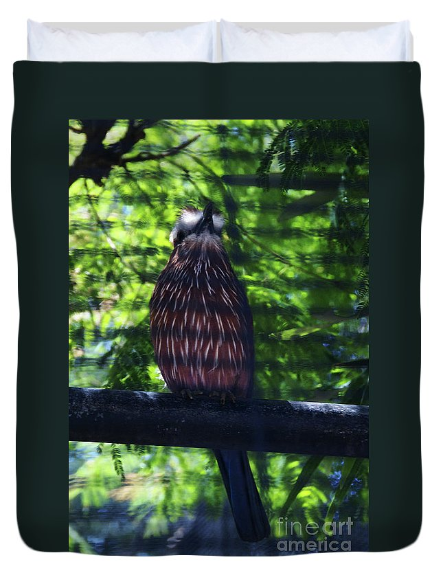 Bird Duvet Cover featuring the photograph Perched - 4 by Linda Shafer
