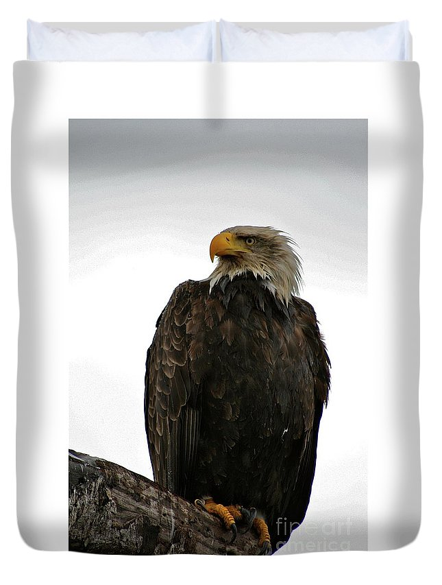 Eagle Duvet Cover featuring the photograph Perched by Rick Monyahan