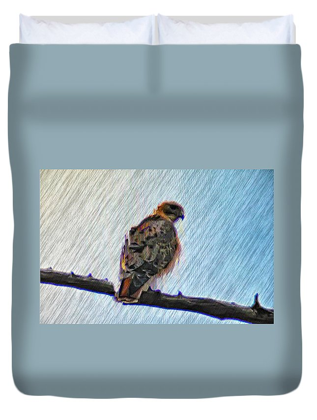 Peregrine Duvet Cover featuring the photograph Peregrine Falcon by Bill Cannon