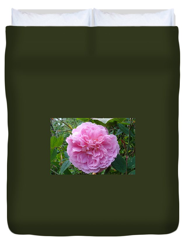 Rose Duvet Cover featuring the photograph Perfect Pink Rose by Susan Baker